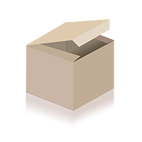 Shelby Mustang GT 350 H