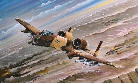 Hobby Boss - A-10A Thunderbolt II