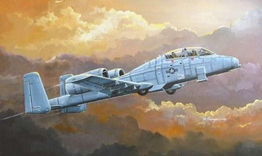 Hobby Boss - N/AW A-10A  THUNDERBOLT II