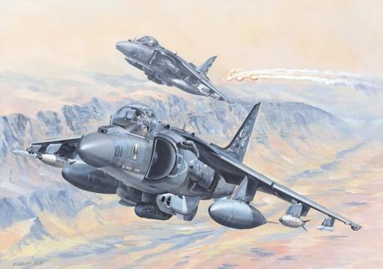 Hobby Boss - AV-8B Harrier II